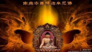 Nhạc Phật - Hôm nay ta về đây - Tú Linh ft Nguyễn Đức
