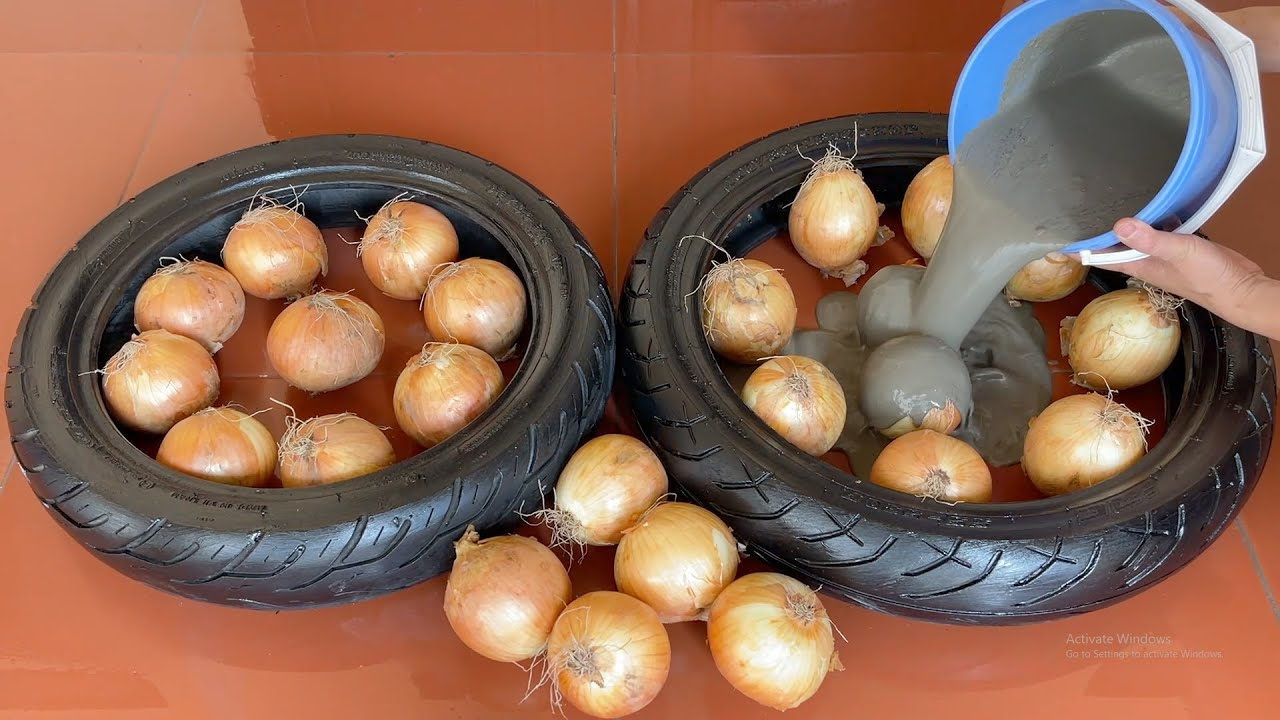 Awesome Ideas From  Onions  , Tire And Cement . How To Make A Beautiful Coffee Table  With Onions .