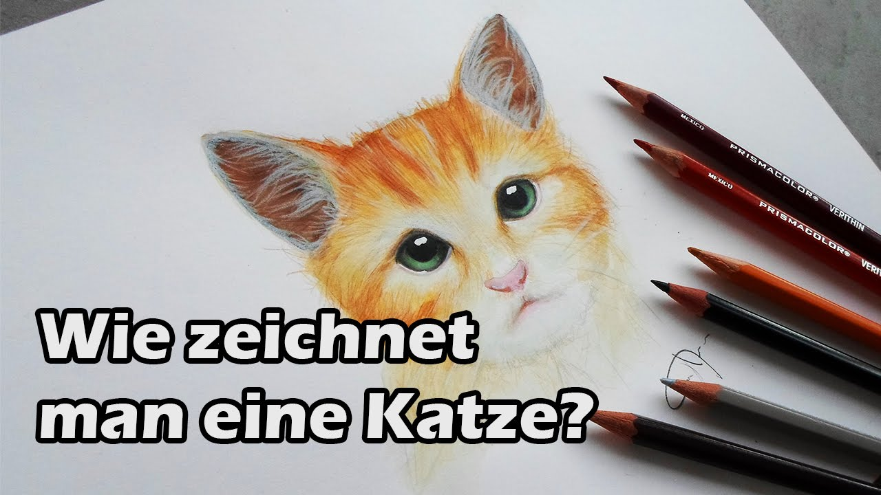 wie zeichnet man eine katze how to draw a cat f r tutorial untertitel einschalten youtube. Black Bedroom Furniture Sets. Home Design Ideas
