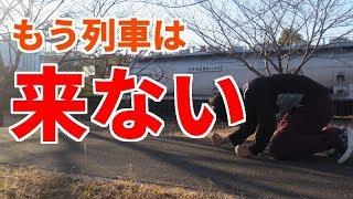 【1日1本】国鉄清水港線廃線跡をめぐる#2【特定地方交通線】