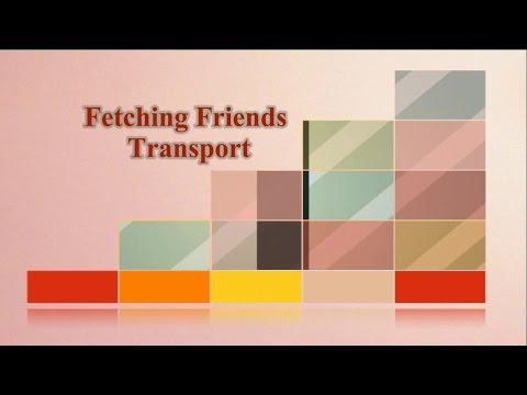 Fetching Friends Transport
