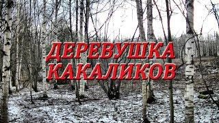 Деревушка какаликов / 1 день #113