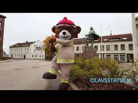 Bjørnis besøker Sarpsborg