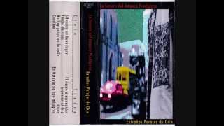 LA SONORA DEL AMPARO PRODIGIOSO - Extraños parajes de orín (PERÚ) 1996 FULL ALBUM