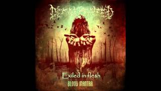 Decapitated   Exiled in flesh with lyrics