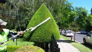 Topiary, hedge trim, garden maintenance. Youtube Link to a newer version in comments