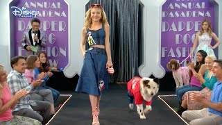 Dog With A Blog - Avery & Stan Walk The Catwalk! - Official Disney Channel UK HD