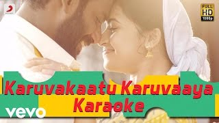 Maruthu - Karuvakaatu Karuvaaya Karaoke | Vishal, Sri Divya | D. Imman
