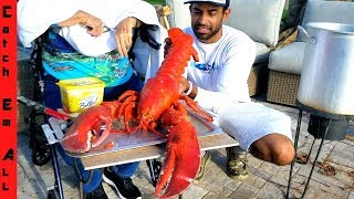PET 15lb GIANT LOBSTER visits RED LOBSTER!