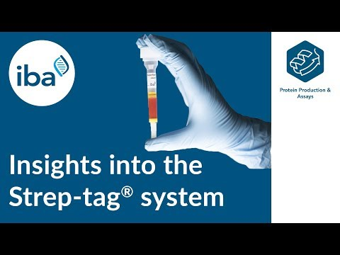 Protein Purification: Insights into the Strep-tag® technology
