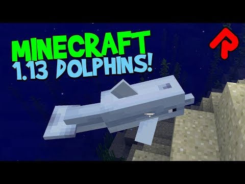 MINECRAFT DOLPHIN HUNT! | New Minecraft 1.13 snapshot (Update Aquatic Java Edition preview)