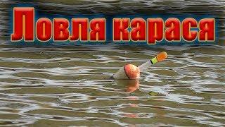 Ловля карася на поплавок в маленьком озере Осеняя рыбалка