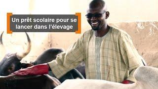 Burkina Faso : Un prêt scolaire pour se lancer dans l'élevage