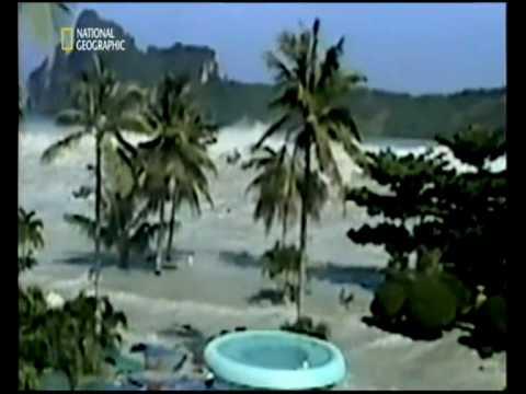 essay on tsunami in sri lanka