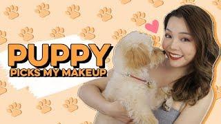 Milo Chọn Makeup Cho Trinh ♡ My Puppy Picks My Makeup ♡ TrinhPham