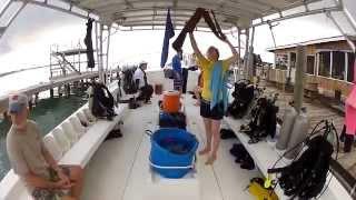 GoPro Diving With Utila Lodge, Utila Bay Islands Honduras