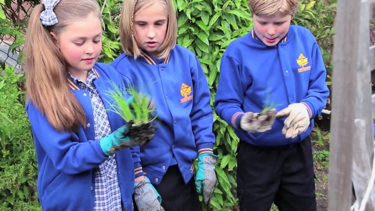 Stephanie Alexander Kitchen Garden National Program Join The Kitchen Garden Classroom Youtube