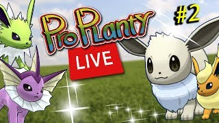 Live Shiny Eevee Community Day Pokemon Go Round 2
