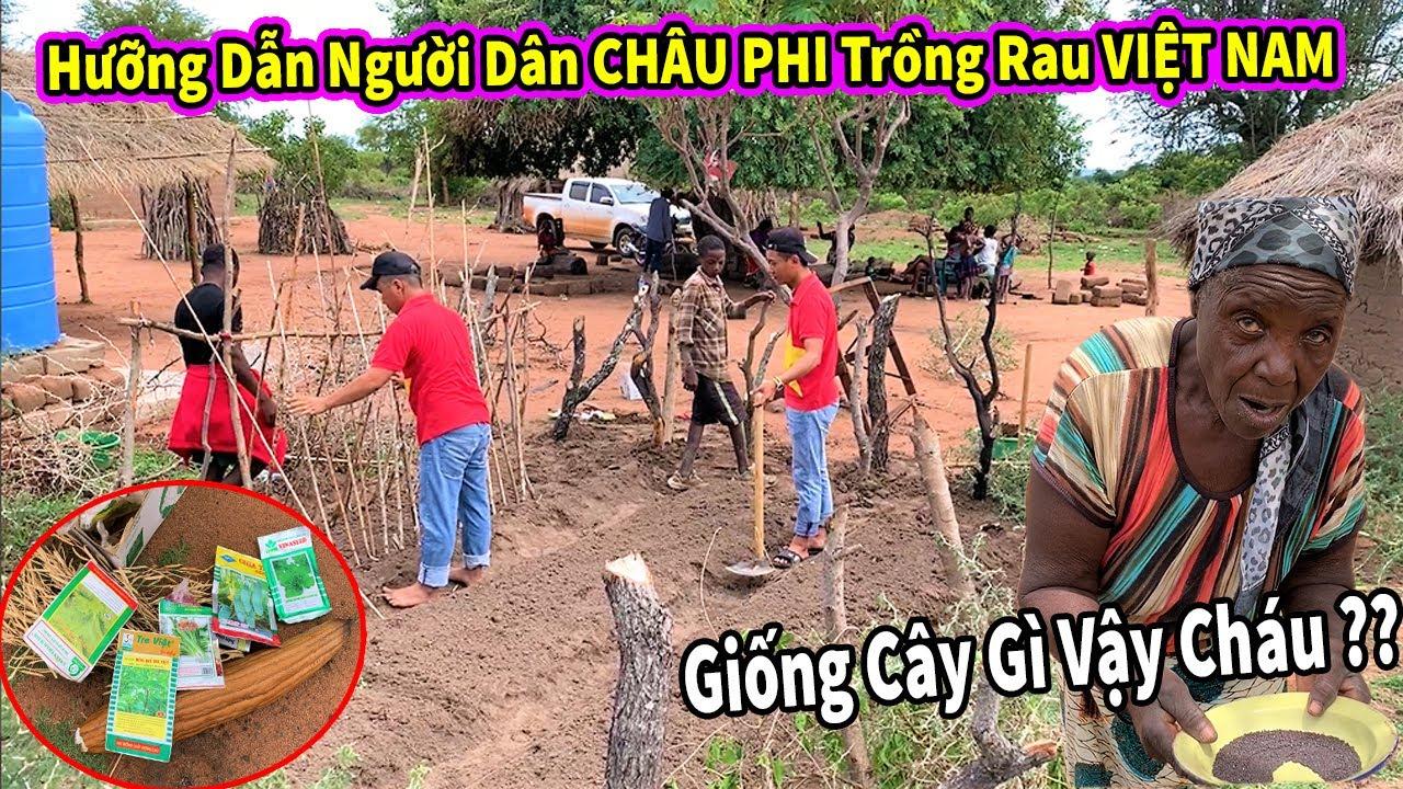 Quanglinhvlogs || Hưỡng Dẫn Người Dân Bản Địa CHÂU PHI Trồng Rau Của VIỆT NAM