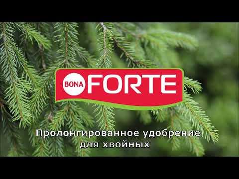 Удобрение Bona Forte  для хвойных пролонгированное с биодостпуным кремнием