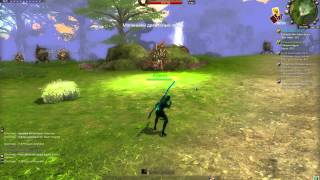 World of Dragons CBT gameplay