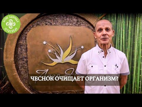 ЧЕСНОК ЧИСТИТ ОРГАНИЗМ? | ОГУЛОВ АЛЕКСАНДР ТИМОФЕЕВИЧ
