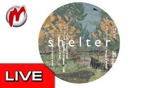● Shelter - запись прямого эфира