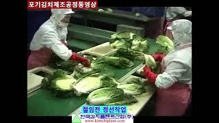 김치기계( 포기김치제조공정동영상)