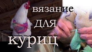 Вязание для куриц