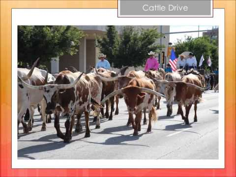 Amarillo Chamber 2015-16 Year In Review