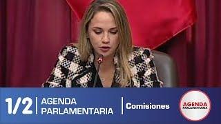 Sesión Comisión de Levantamiento de Inmunidad Parlamentaria 1/2 (06/06/19)
