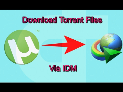 torrent file download with idm unlimited