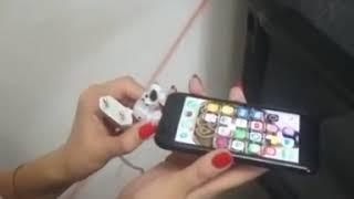 Собака ебет смартфона ))))))