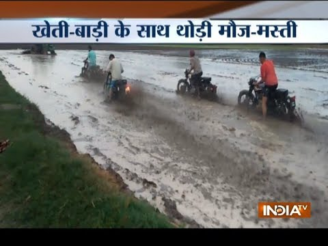 Watch: Youths in Punjab perform stunts on camera in flooded agricultural fields