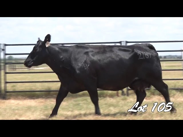 Pollard Farms Lot 105