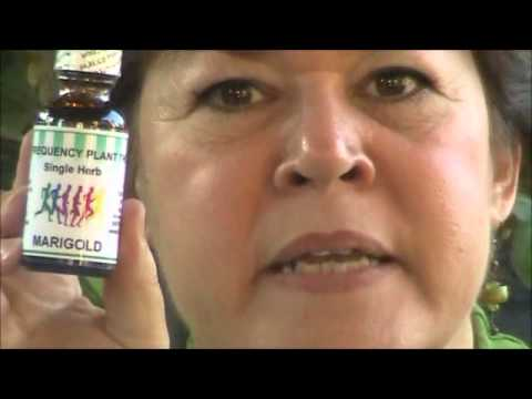 pituitary gland health supplements