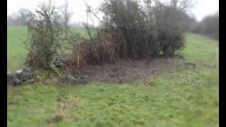 Video Removal of the Blackthorn Bushes download MP3, 3GP, MP4, WEBM, AVI, FLV Desember 2017