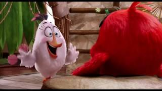 Angry Birds Movie Anger Management Class HD