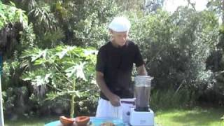 Raw Food Champ Free Raw Food Recipes - Papaya Boats