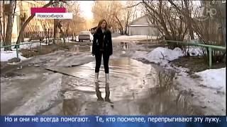 Лучшие приколы в Новостях