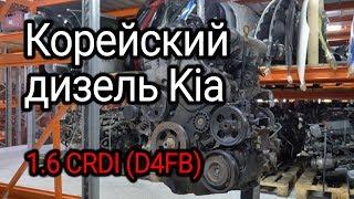 Почти идеальный? Вскрываем корейский дизель 1.6 CRDi Hyundai / Kia (D4FB)
