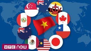 CPTPP cơ hội cho hàng Việt xâm nhập thị trường Mỹ La Tinh