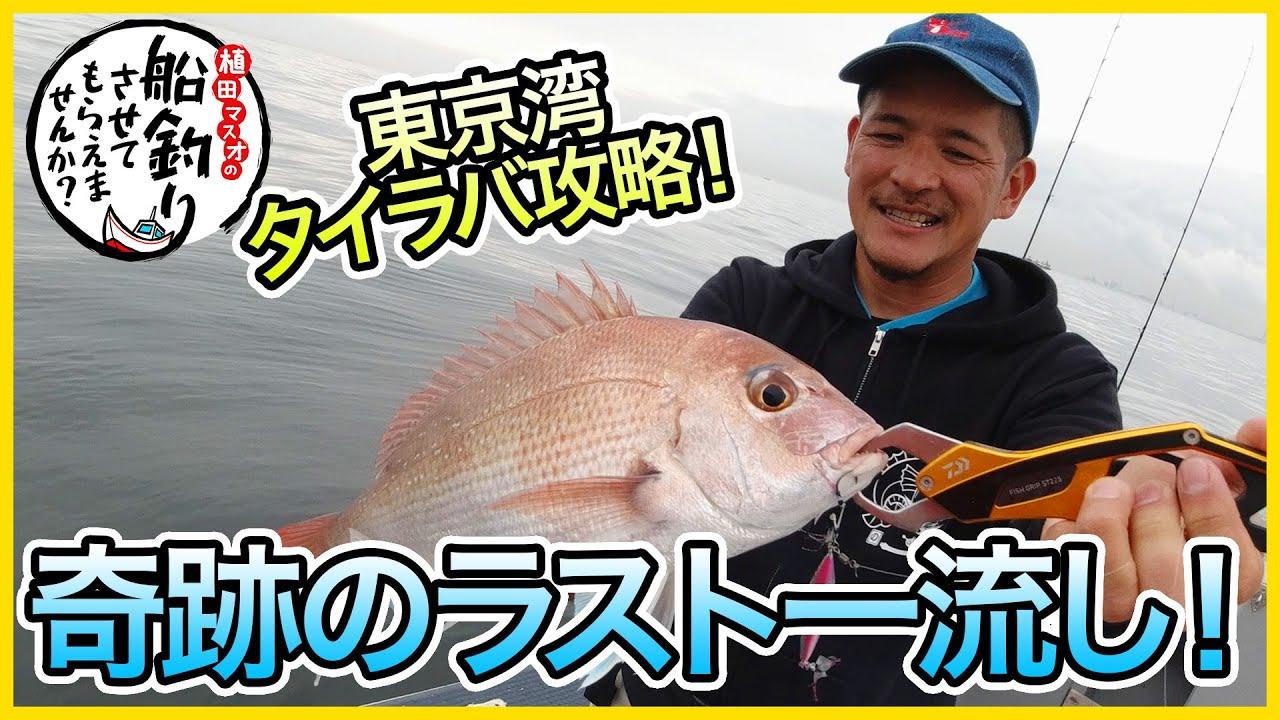 【東京湾タイラバ&SLJ】@のんちゃん丸 3/3