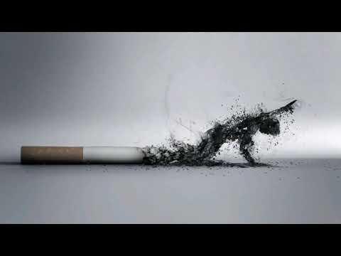 Baby Jake - Cigarettes On Patios - YouTube