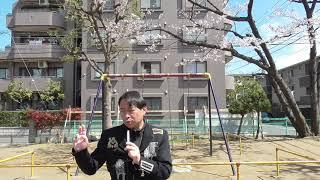 日本歴代天皇二千六百年史・第109代明正天皇