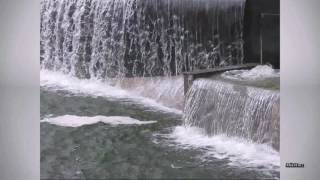 видео Блистательный и дачный Петергоф