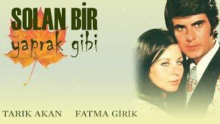 Solan Bir Yaprak Gibi (1971) - Fatma Girik & Tarık Akan