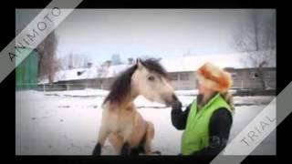 А мой смысл жизни это конный спорт...