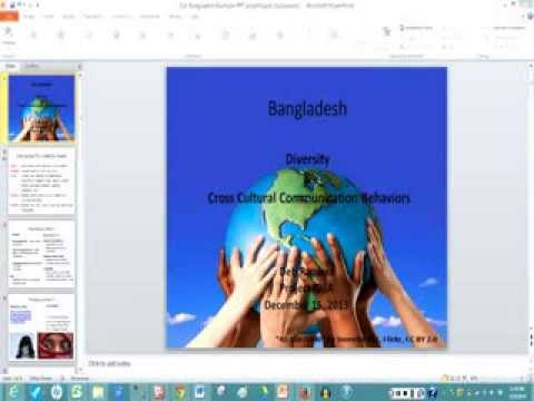 Project IDEA:  Cross Cultural Communication Project Sample PPT