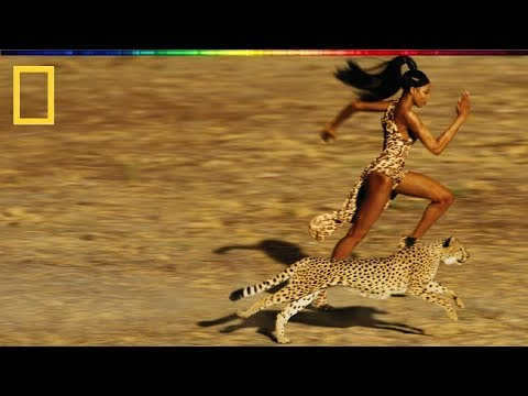 National Geographic  Race of Life  BBC Documentary